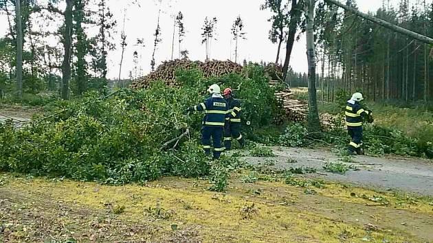 Silný vítr, který shazoval stromy a odnášel střechy, zaměstnal jihomoravské hasiče.