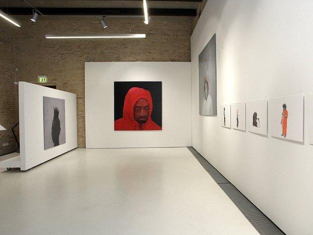 Fait Gallery v Brně-Králově Poli v minulosti představila například kresby Petra Nikla.