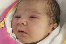 Sofie Kolegarová z Brna nar. 15.12.2016 v Nemocnici Milosrdných bratří v 22.08hod váží 3130gr a měří 50cm.