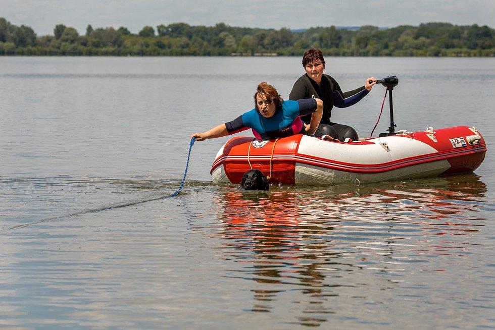 V sobotu 4.7.2020 trénovali psovodi z Jihomoravské brigády Svazu záchranných brigád kynologů ČR na rybníku Vrkoč.