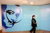 Výstava na hradě Špilberk ve spolupráci s Muzeem města Brna představuje výstavu děl Salvatora Dalího pod názvem Zhmotnění neskutečného.