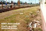 Dolní nádraží v Brně krátce po začátku velké letní vlakové výluky ve městě.