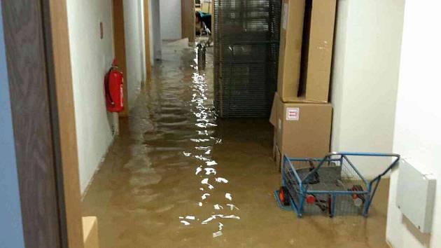 Klidný víkend nezažilo vedení základní školy ve Vídeňské ulici v Brně, kterou v sobotu kolem jedné odpoledne vytopilo prasklé vodovodní potrubí.