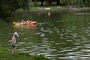 Zhoršená kvalita vody v přehradě v pátek většinu lidí od koupání odradila.