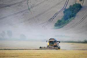 V minulých letech zemědělce na jihu Moravy trápilo sucho.