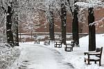Cesta na Špilberk zapadaná sněhem.