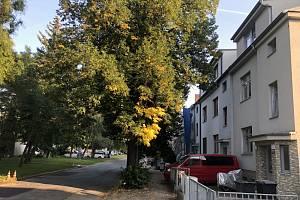 V Komprdově ulici v Brně-Židenicích měl vyrůst vysílač pro posílení mobilního signálu. Měl být třikrát vyšší než zástavba okolo.