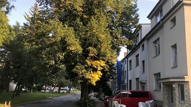 Stožár před okny: v Brně chtěli stavět vysílač, třikrát vyšší než domy okolo