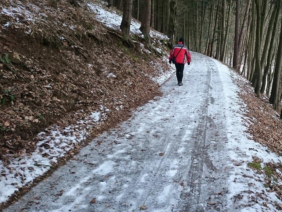 Prudké sněžení, které v úterý prvního března odpoledne zastihlo jižní Moravu, podle meteorologů v dalších dnech nevydrží. Ze sněhu mohou mít radost jen lyžaři, ve městech bílá pokrývka roztaje.