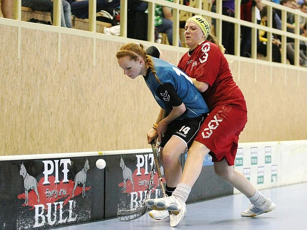 Jeden z největších florbalových turnajů v České republice v neděli rozhodl o letošních vítězích. V kategorii mužů se z titulu a penězní prémie tisíc eur (asi 24 tisíc korun) na Hummel Cupu radovali hráči BSP Liberta.