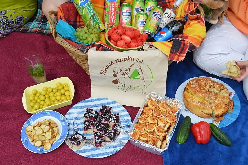 Akce Česko jde spolu na piknik vyzvala lidi z různých míst naší země, aby pořádali ve stejný čas piknik. Na snímku loňský piknik Plyšové tlapky v Brně-Bohunicích.