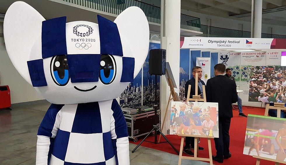 Tisková konference k Olympijskému festivalu 2020.