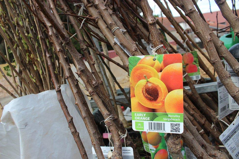 Na Blanensku se nejvíc prodávají jabloně a hrušně. podle prodejců je to dané drsnějším podnebím v oblasti. Meruňky a broskve se pak lépe prodávají v jižních okresech Jihomoravského kraje.