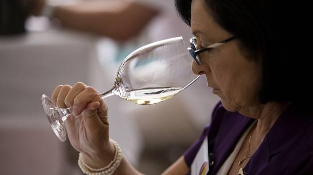 Soutěžte s Deníkem Rovnost o lístky na galavečer TOP 77 vín