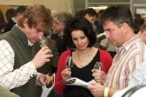 33. jihomoravská regionální výstava vín.