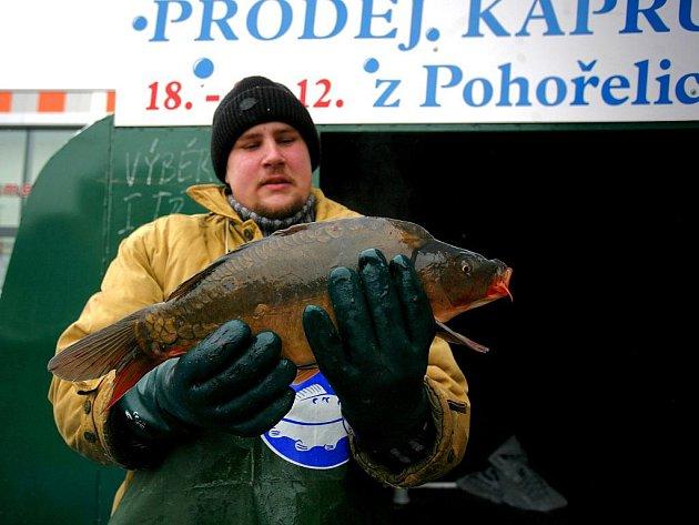 Obchodníci zahájili prodej živých ryb.