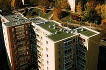 Střechu panelového domu v Bohunicích pokryl zelený koberec.