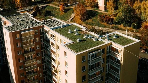 První panelák v Brně má novou zelenou střechu. Místo asfaltu ji zdobí sukulenty
