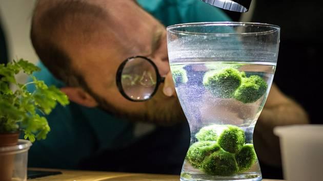 Březen se ve VIDA! Science centru ponese ve znamení ekologie.