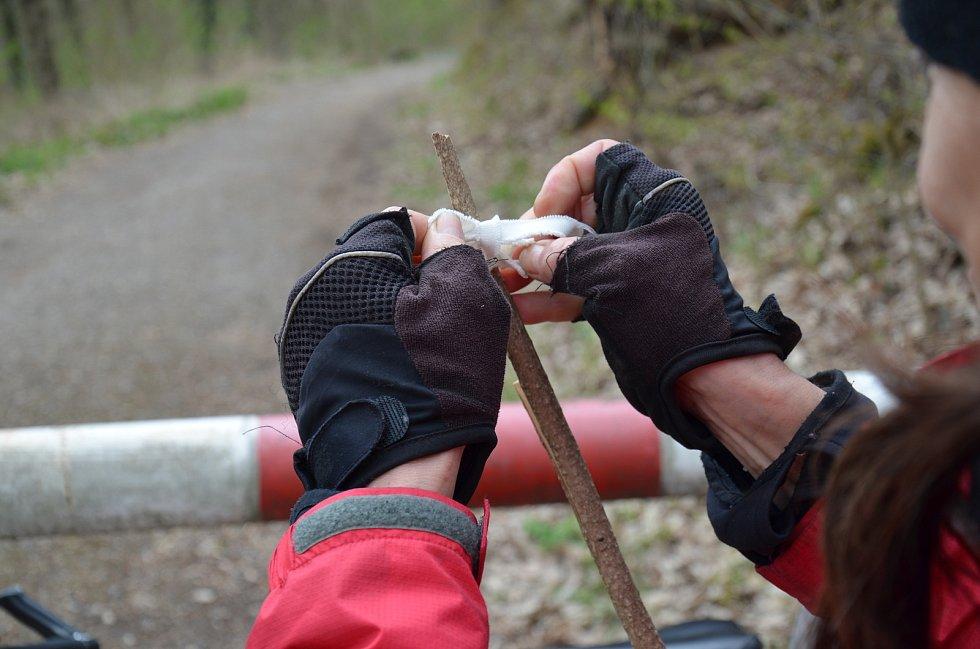 Při sbírání Žákovská využívá bílé chloupkaté plátno, na které se klíšťata snadněji zachytí.