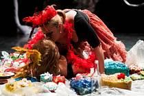 Pořádající Janáčkovu akademii múzických umění na festivalu zastoupí představení Absolutní štěstí mouchy aneb Poslední mystifikace Salvadora Dalí. V režii Oxany Smilkové se v něm představí studenti čtvrtého ročníku činoherního herectví.