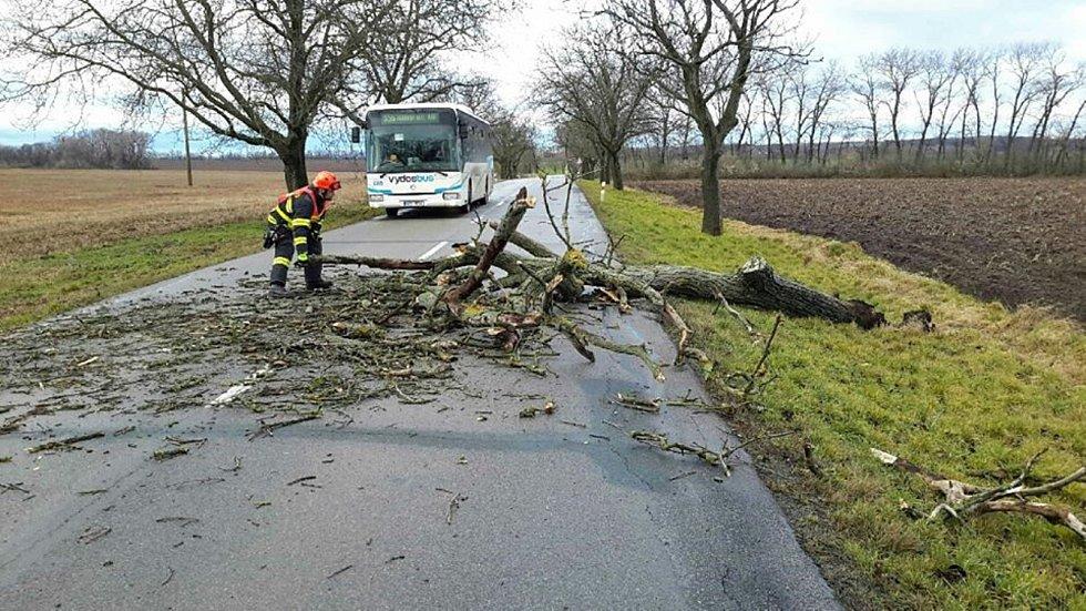 Desítky zásahů po celé jižní Moravě mají hasiči v úterý dopoledne v souvislosti se silným větrem. Některé stromy spadly i na auta.