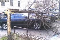 Strážníci v Brně řešili v souvislosti se silným větrem zhruba dvacet záležitostí.