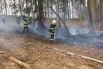 Silný vítr ve čtvrtek na jihu Moravy vyvracel stromy a komplikoval hašení.
