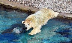 Noria se rozkoukává v Zoo Rostock