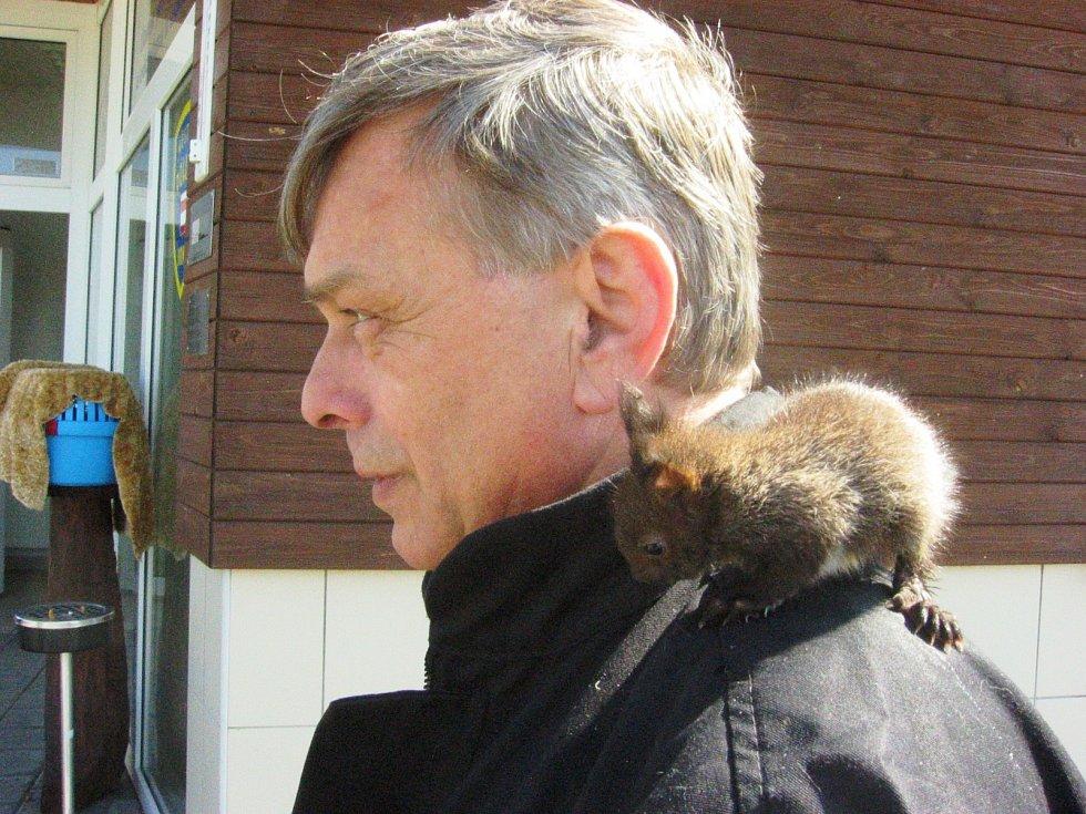 Kromě selete strážník odchoval i dvě opuštěné veverky a tři kuny. Mezi svými kolegy si vysloužil přezdívku Veverčí táta.