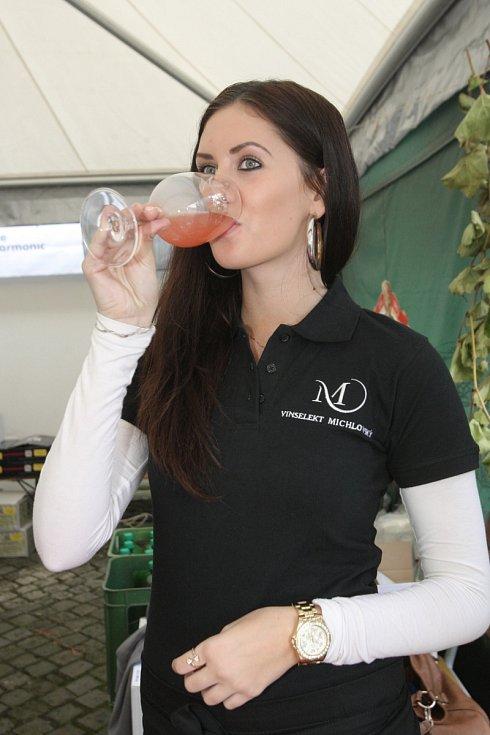 Burčákománie – špilberské vinobraní 2014.