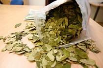Policisté odhalili zásilku koky z Peru.