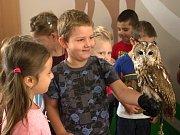 Lidem se v Brně otevřelo nové centrum lesní pedagogiky. Mohou se v něm vzdělávat zdarma