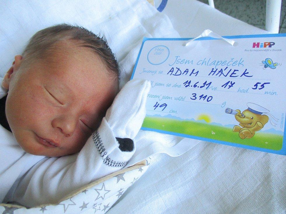 Adam Hájek, 12. června 2021, Hodonín, Nemocnice Břeclav, 3110 g,  49 cm