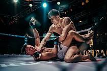 Turnaj Oktagon 21 ve smíšeném bojovém umění MMA opět hostila brněnská Zoner Bobyhall.
