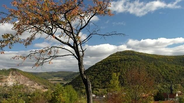 Kopec Květnice u Tišnova na Brněnsku je známý nejen díky jeskyním a nerostům, ale také vzácným rostlinám. Patří k nim třeba teplomilný jeřáb břek. Tamní krajinu oživuje také potok Besének.