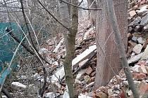 Firma Icarus BP z Veverské Bítýšky na Brněnsku překročila povolenou kapacitu odpadu a stavební sutí a podle České inspekce životního prostředí poškodila 30 stromů.