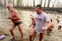 Ledovou vodu řeky Svratky letos poprvé okusili brněnští otužilci.