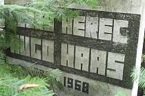 UKRYTÝ V ZELENI. Nebýt šipek, které na něj odkazují, náhrobek by mezi velkými tmavými kameny okolních hrobů zapadl.