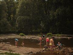Kvůli suchu v Brně a okolí klesají hladiny řek a schne úroda.