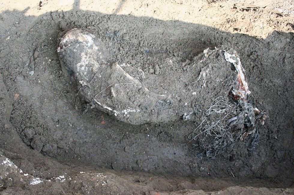 Detektivové z Útvaru pro odhalování organizovaného zločinu vykopávají mrtvolu Vasyla Kalugina.