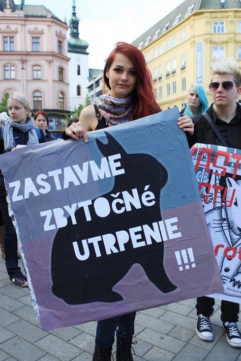 Na zneužívaní zvířat jako pokusných objektů v laboratořích upozornili v pondělí aktivisté ze skupiny Kolektiv pro zvířata.