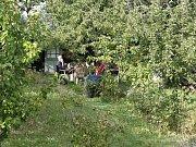 Den otevřených dveří uspořádali lidé ze zahrádkářské osady Malina na brněnské Kraví hoře. Od roku 1953, kdy kolonie existuje, to bylo poprvé.