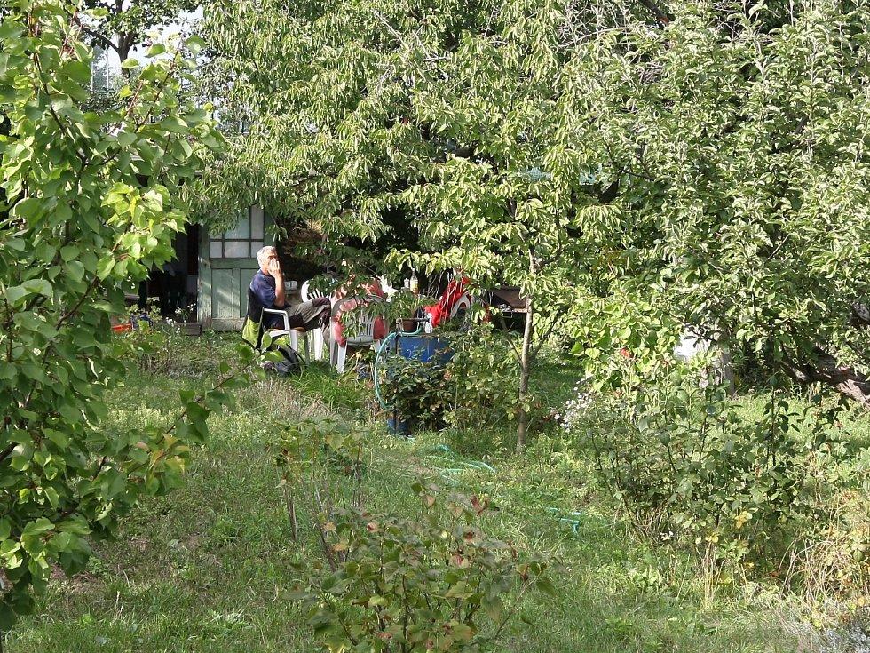 Zahrádkářská osada na brněnské Kraví hoře, ilustrační foto