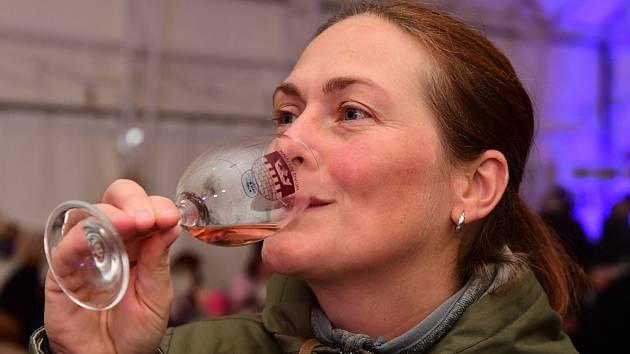 Svatomartinské víno letos lidé společně neochutnají. Pořadatelé nabízejí on-line program.