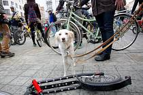 Velká jarní cyklojízda Brnem