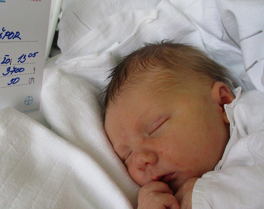 Josef Nešpor, 27. 11. 2020, Nemocnice Břeclav, Břeclav, 3700 g, 50 cm
