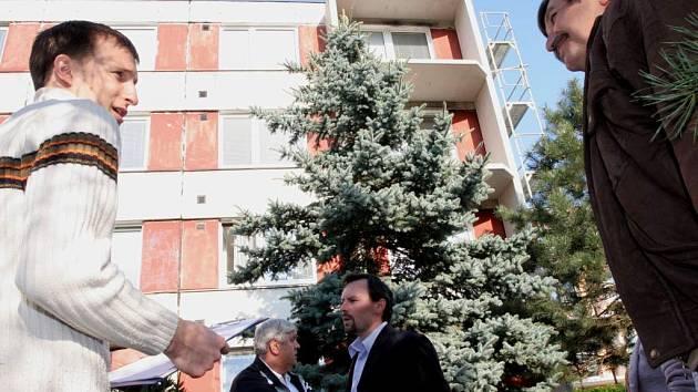 Kácení stromu před panelák v ulici Čtvrtě v Novém Lískovci.