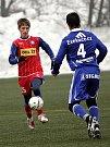 1. FC Brno v zápase proti Sigmě Olomouc.
