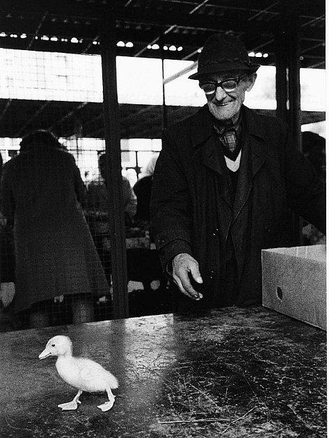 VŠEDNÍ RADOSTI. Kolářův snímek z roku 1966.